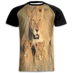 Newfood Ss Mom Lioness and Young Lion Kings in South African